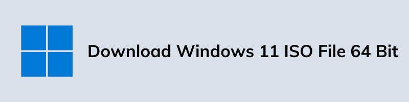 Download Windows 11 ISO File 64 Bit