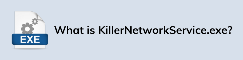 What is KillerNetworkService.exe