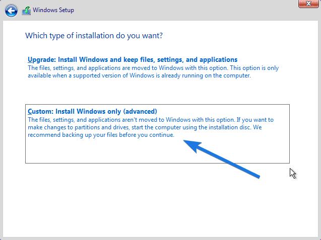 Custom Install Windows Only - advanced