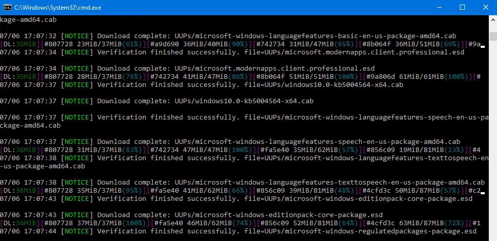 Downloading Windows 11 ISO File