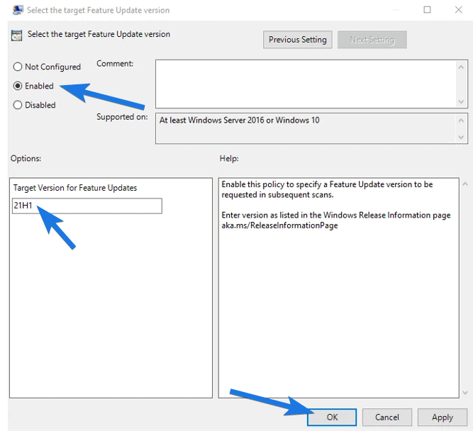Enabled and type 21H1 as Feature Updates